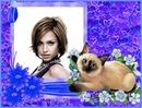 Siamese Cat Purple hearts