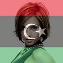 Libya Flag / customizable Libyan