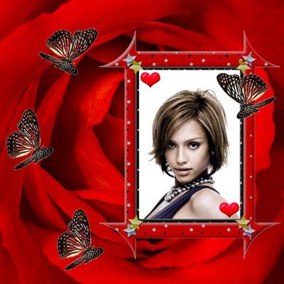 montage photo rose rouge papillons coeur pixiz. Black Bedroom Furniture Sets. Home Design Ideas