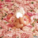 anne geddes bebe rose