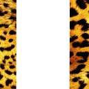 collage animal print