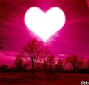 L'amour en rose
